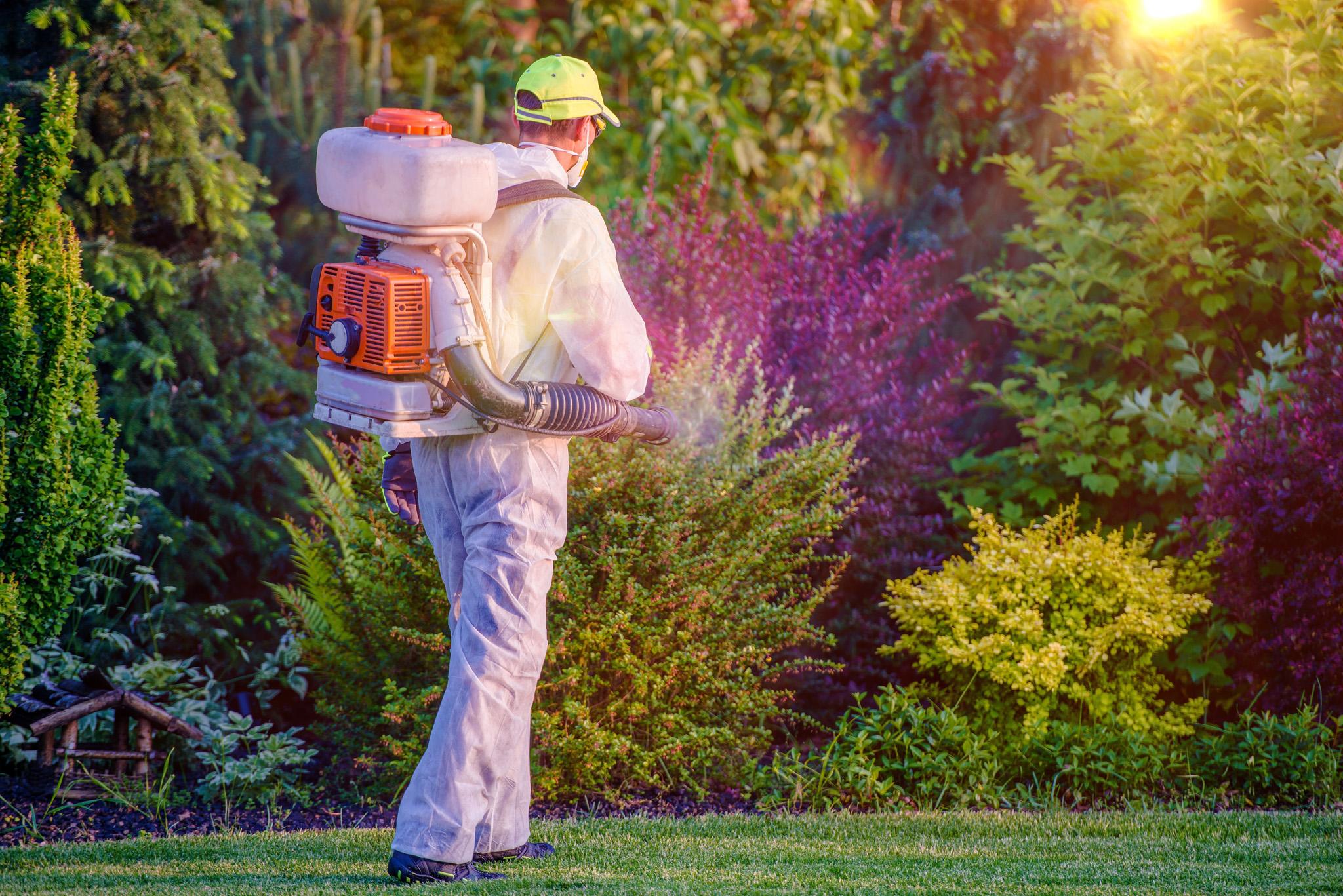 Pest Control Company Davie