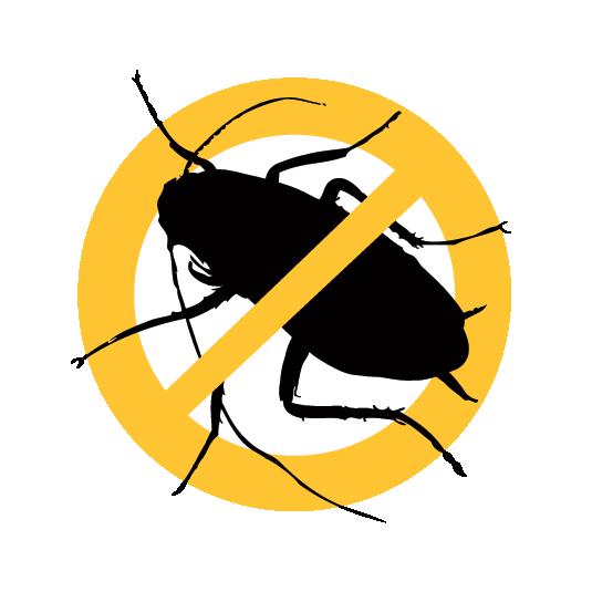 Home Pest Control Davie